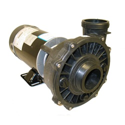 Pumps | Complete PumpsPUMP: 1.0HP 115V 60HZ 2-SPEED 48 FRAME EXECUTIVE