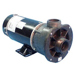 Pumps | Complete PumpsPUMP: .75HP 115V 60HZ 2-SPEED 48 FRAME