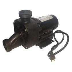 Pumps | Bath PumpsPUMP: GEMINI PLUS II 120V WITH NEMA PLUG AND AIR SWITCH